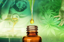 CBD Oil: The New Way of Wellness