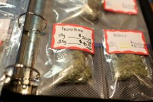 Parents Are Using Medical Marijuana To Treat Their Kids' Autism, But Does It Really Help?