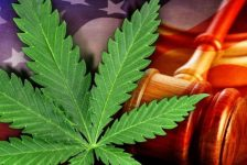 Governor Extends CBD Oil Education Period, Enforces Moratorium On Raids, Fines & Arrests