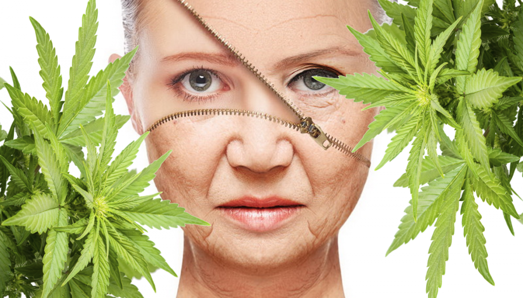 How CBD Can Help Protect Aging Skin