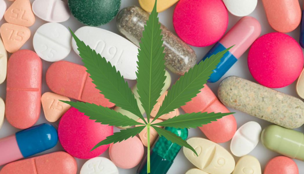 """Grandmother Throws Out """"All Her Pills"""" and Says Cannabis Is The Key"""