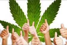 80 Percent of CBD Users Claim it to be Extremely Effective