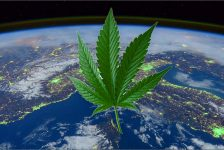 Earth Day & Cannabis