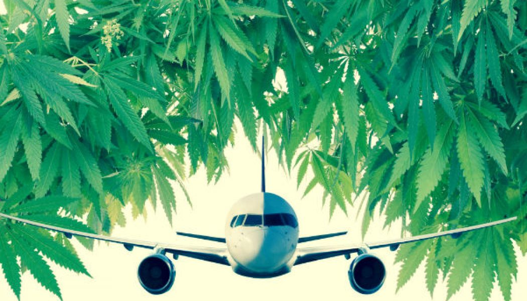 Traveling With Your Cannabis? Here's What You Need To Know