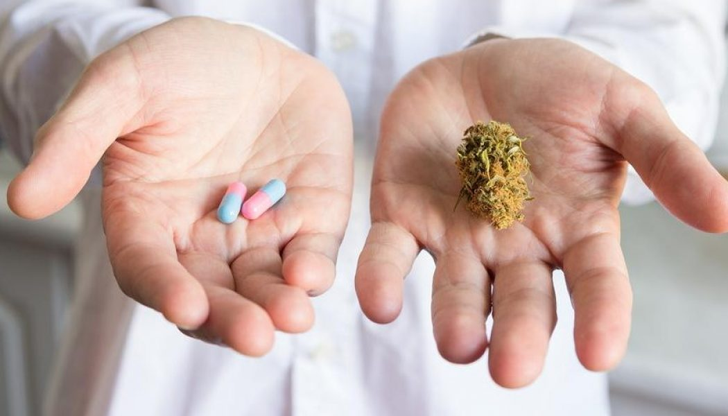 Does Cannabis Offer Better Pain Relief Than Aspirin?