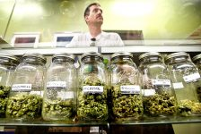 Knowing the Differences Between a Good & Bad Dispensary