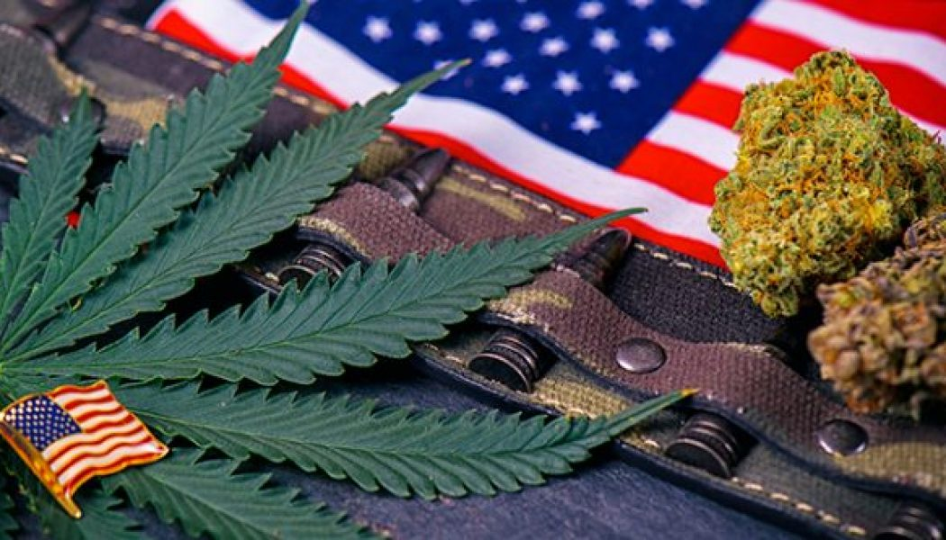 Congress is Considering Passing a Bill Allowing Cannabis Research and Treatment for Vets