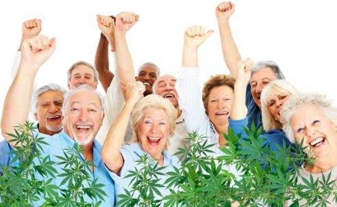 The Complete Guide to Medical Cannabis for Senior Citizens