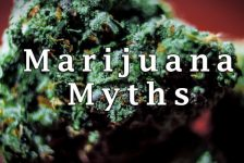 5 Shutdowns to Marijuana Myths Every Cannabis Enthusiast Should Know