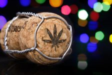 Holiday Reminder: Cannabis and Alcohol Just Don't Mix