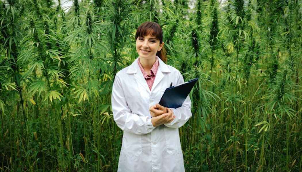 This Is Everything You Need to Know About Finding a Marijuana Doctor