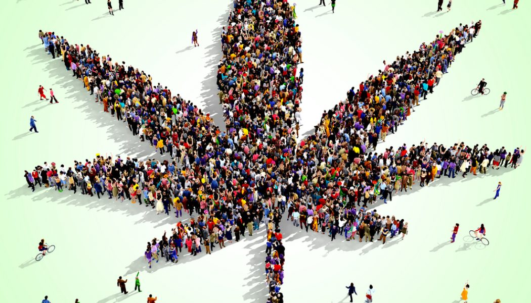 A Concise Guide To The New World Of Marijuana For Older Adults