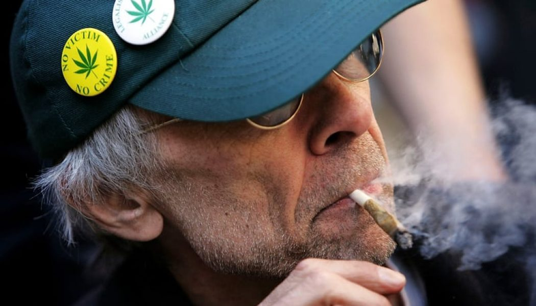 Study: Older Marijuana Users Are More Productive