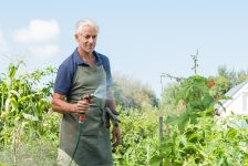 The Health Benefits of Gardening for Older Adults & 7 Great Tips for Early Spring Gardening