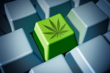 8 Most Common Health Conditions Cannabis, Most Specifically CBD, is Used for