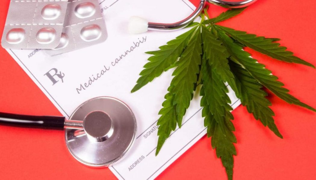 73% of Cancer Doctors See Cannabis as Medicine, Survey Says