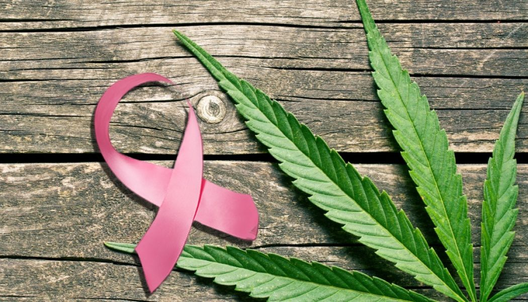 57 Year Old Cancer Patient SUES State of Michigan, Not for Money but for Access to her Legally Prescribed Marijuana