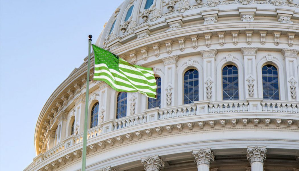 What Was Said at Yesterday's Congressional Hearing on Federal Marijuana Law Reform