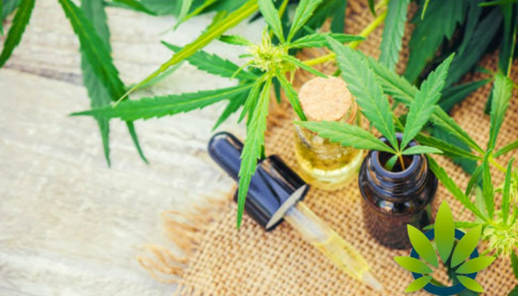 Seniors Everywhere Turning to CBD for Pain Relief
